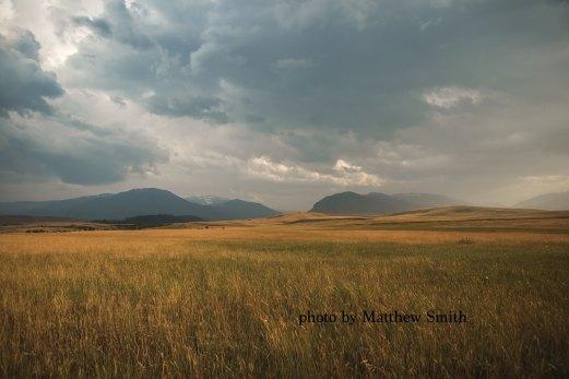 matthew-smith-7137-2